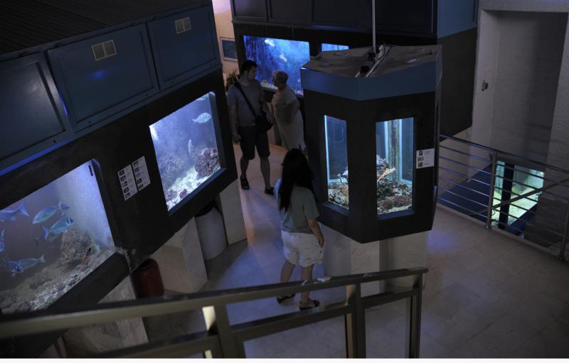 Aquarium, Crikvenica. Ferienwohnung Crikvenica - Privatunterkunft ...